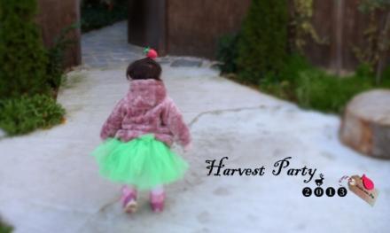 Camino a la harvest party