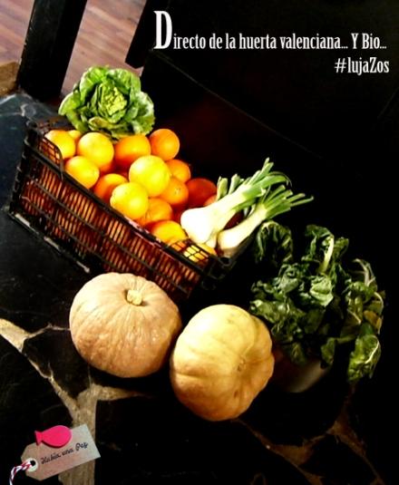Verduras de huerto ecológico
