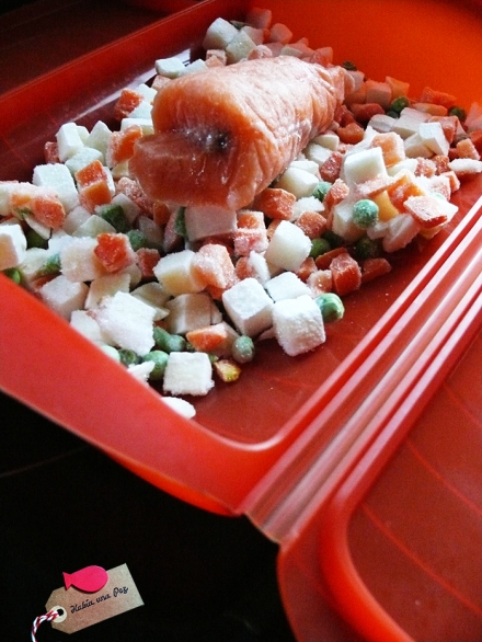Receta rápida salmón lomo